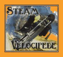 steam velocipede by dennis william gaylor