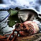Rusty Buoy and a few boats by Juhana Tuomi