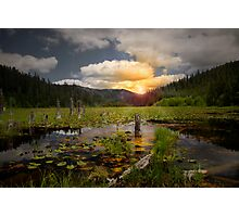 Wolf Meadow Photographic Print