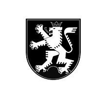 The Lion of Heidelberg (white on black) Photographic Print