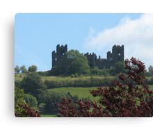 Riber Castle Canvas Print