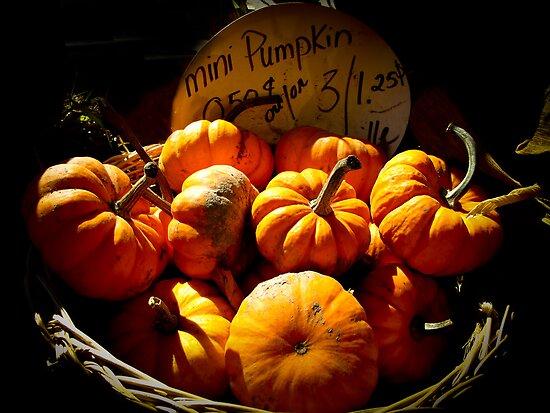 Fall Autumn Harvest Colors - Vignette Photo of Miniature Pumpkins in a Wicker Basket by Chantal PhotoPix