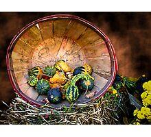 Pumpkins, Gourds & Squash - Wooden Bushel on Hay Bale - Fall Autumn Harvest Photographic Print
