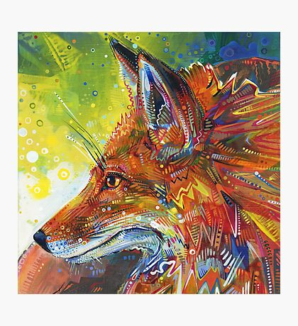 Red fox painting - 2012 Photographic Print