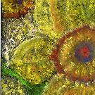 Daffodil by Deborah Pass