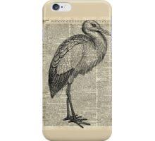 Stork Wild Bird Vintage Ink Illustration Encyclopedia Collage iPhone Case/Skin