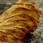 Autumn Leaf by ddfoto