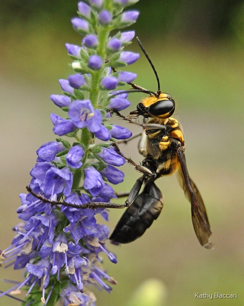 Bee Kind by Kathy Baccari