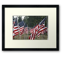 Field Of Flags Framed Print