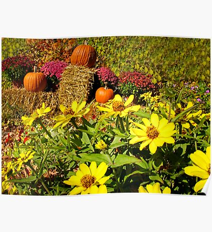 Orange Pumpkins on Hay Bales surrounded by Red Chrysanthemum Flowers & Yellow Daisies Poster