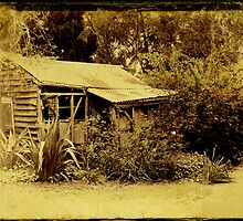 The Old Playhouse by Margi