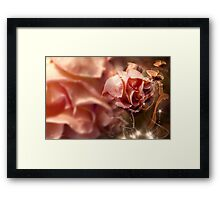 Peach Roses and Ribbons Framed Print