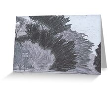 Trees on a Windy Day Greeting Card