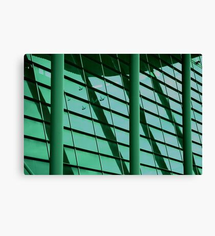 lines, levels and libraries Canvas Print