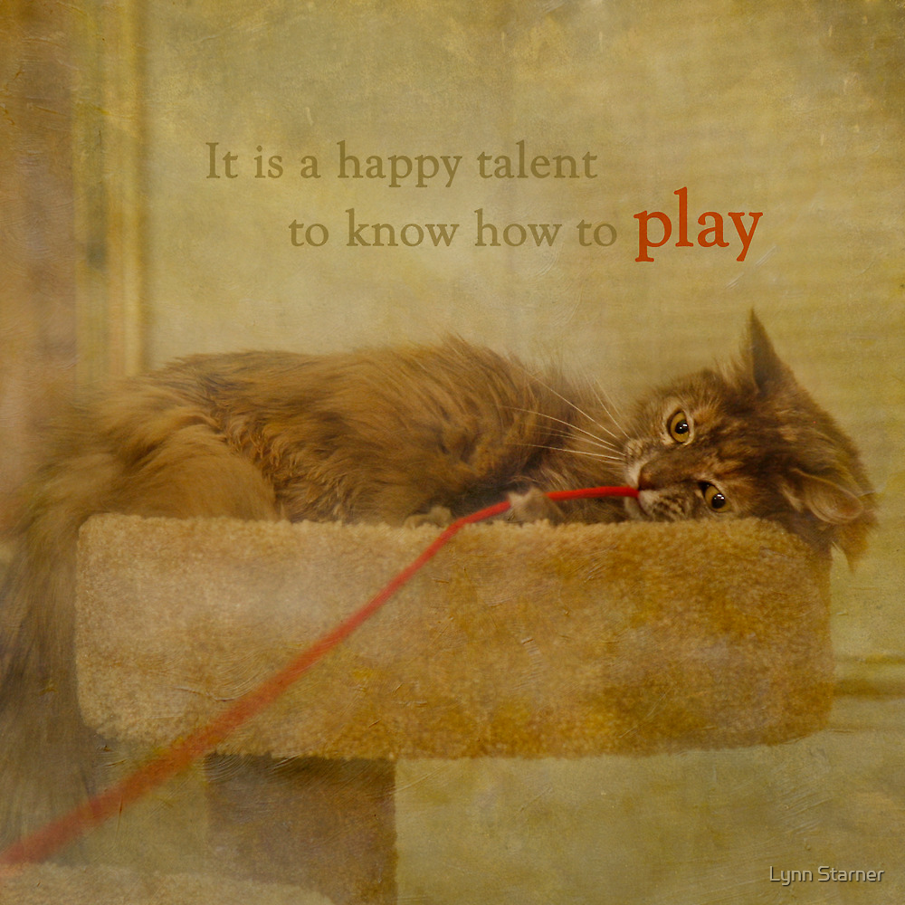 Know how to play by Lynn Starner