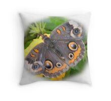 Fuzy Buckeye Butterfly Throw Pillow