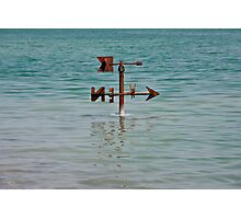 Drowned weather vane  Photographic Print