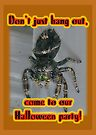 Halloween Party Invitation - Salticid Jumping Spider by MotherNature