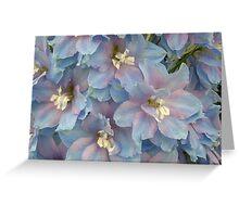 Delphinium Blooms Greeting Card