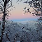 Pink Sky And The Snow by Bearie23
