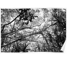 Waihe'e Jungle Poster