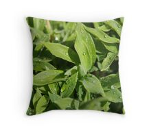 Juicy To The Stem Throw Pillow