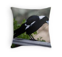 Australian Magpie   Throw Pillow