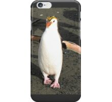 Special Royal Penguin