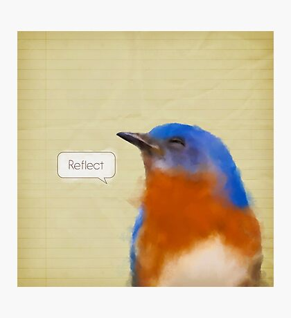 Bird Notes: Reflect Photographic Print