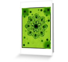Star B Sentation 10 Greeting Card