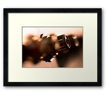 Making choices... Framed Print