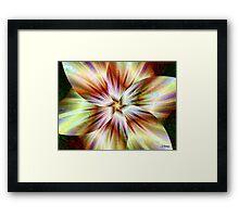 Vanilla Twirl Framed Print