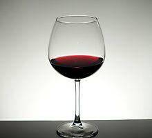 Wine Glass by Mykhaylo Ryechkin