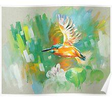 bird-o1 Poster