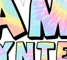 Camp Poyntelle Tie Dye Sticker