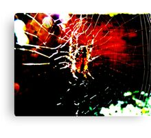 spider man Canvas Print