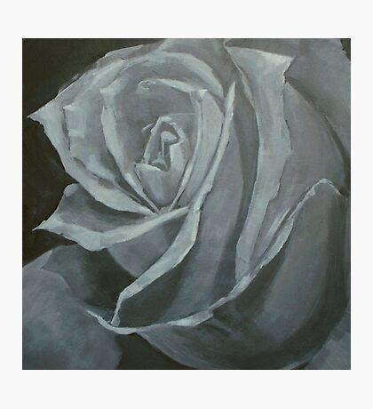 stone rose Photographic Print