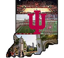 Indiana University Sticker by indianastickies