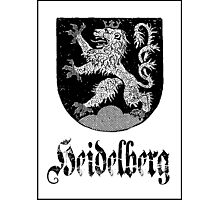The 3-Tailed Lion of Heidelberg Photographic Print