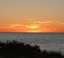 Monkey Mia Western Australia Sunrise #2 by Virginia  McGowan