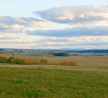 Prairies To The Mountains by Barrie Daniels