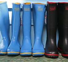 Wellingtons for sale by Jeff  Wilson