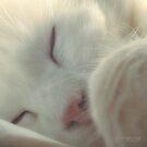While he is Sleeping by ibjennyjenny