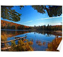 Fall Forest Scene - Autumn Lake Reflection with Floating Logs Poster