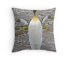 Cooeee you Tourists!  Look at Me!  I'm a Flasher! ;o) Throw Pillow