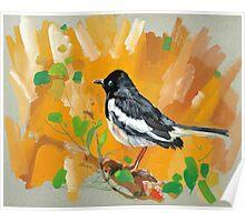 bird-o3 Poster