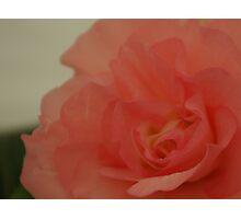 Pastel Peach Photographic Print