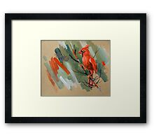 bird-o4 Framed Print