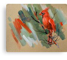 bird-o4 Canvas Print