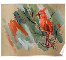 bird-o4 Poster